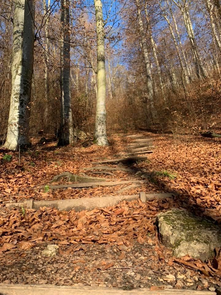 Trail Zone Bakonybél (2021-11-21)